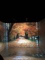Virtualios realybės laboratorijoje