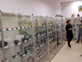 Pamoka Mineralogijos muziejuje
