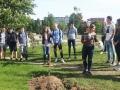 Kaip mūsų gimnazija galėtų būti draugiškesnė aplinkai?